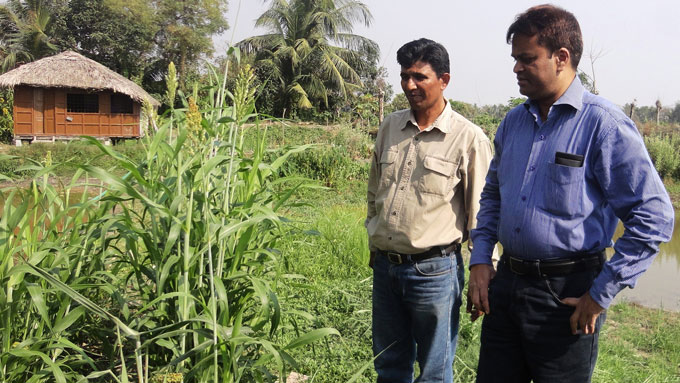 AFSP programme head visits farmers' research plot.