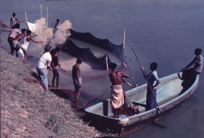 Training and supporting fishermen were one of BRAC's first development efforts.