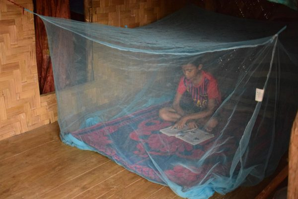How to eliminate malaria: At the last mile in Bangladesh